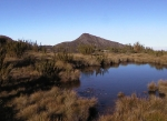 Parque Nacional (103)